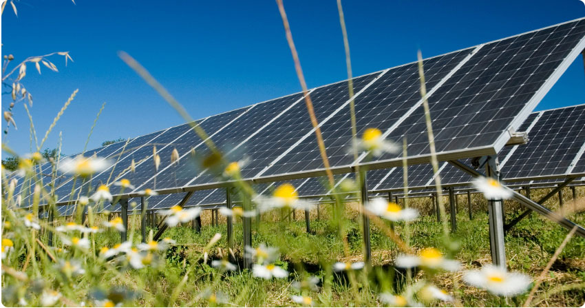 Subsdie op zonnepanelen